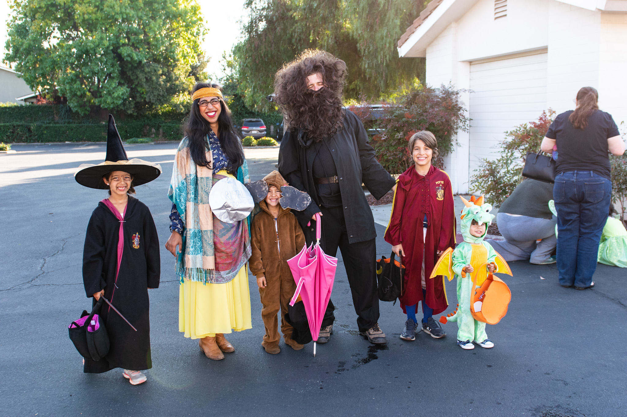halloween costumes for families harry potter