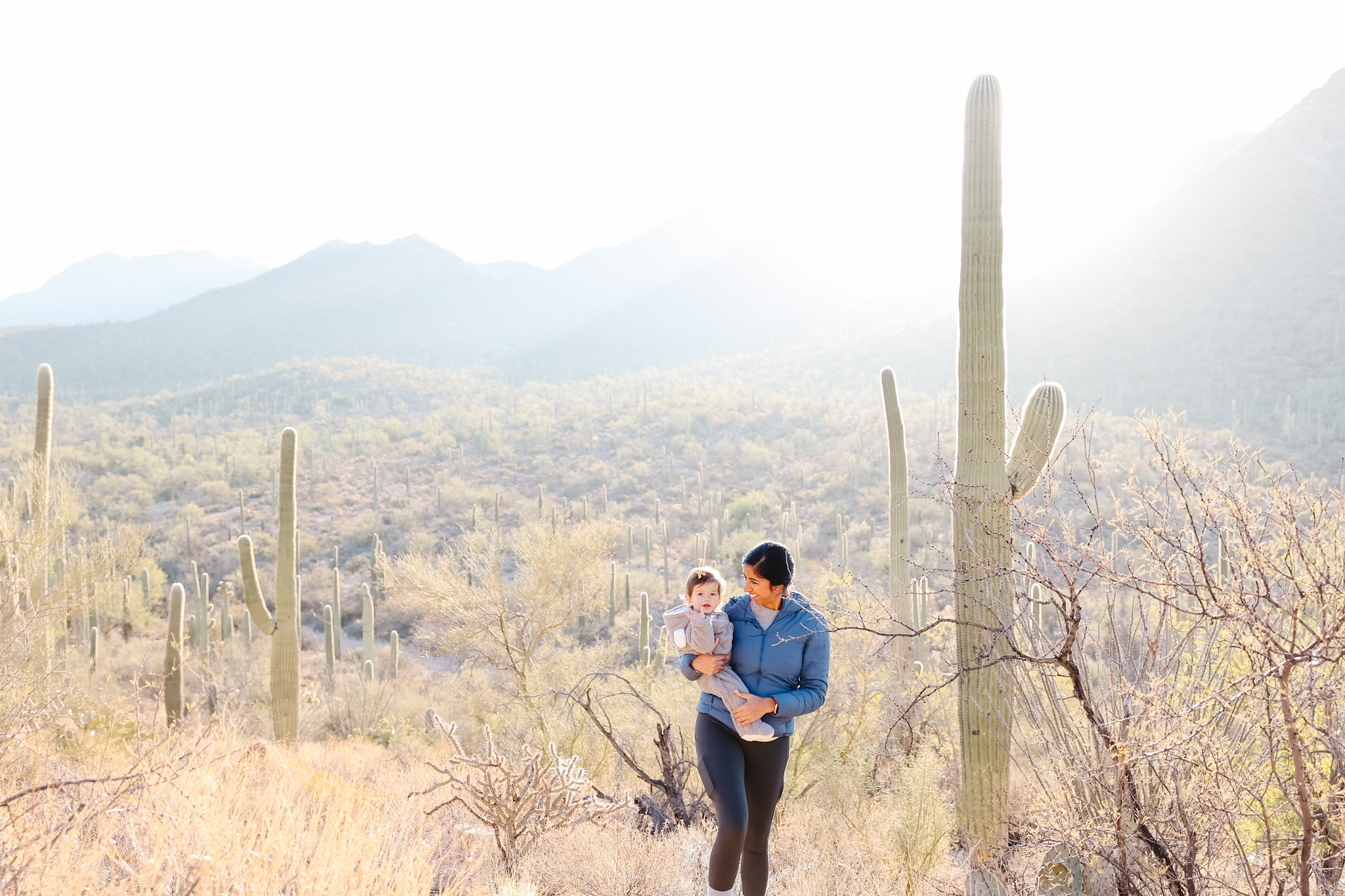 Easy hikes in saguaro national park